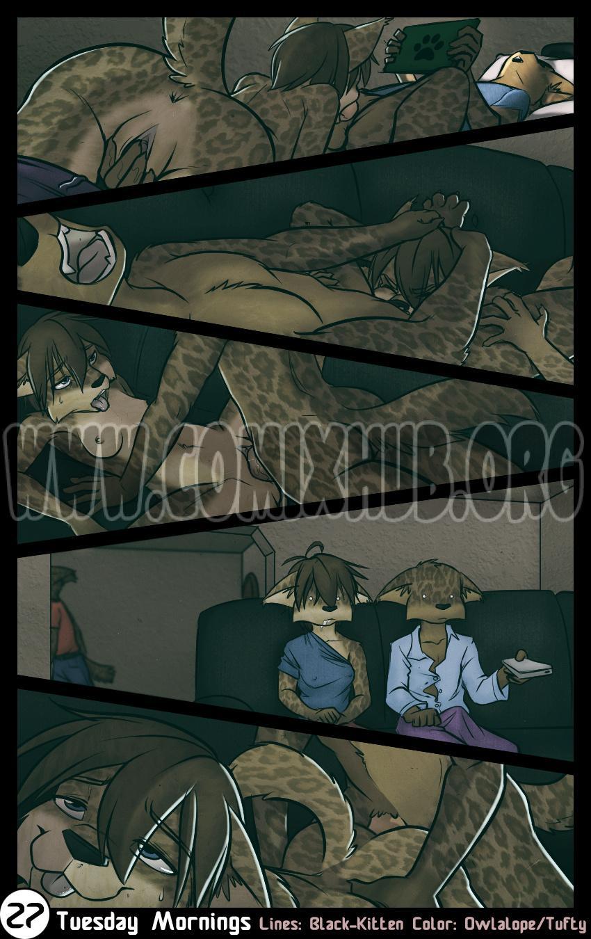 Tuesday - Black-Kitten porn comics Oral sex, Blowjob, Creampie, cunnilingus, Deepthroat, Furry, incest, Straight, X-Ray
