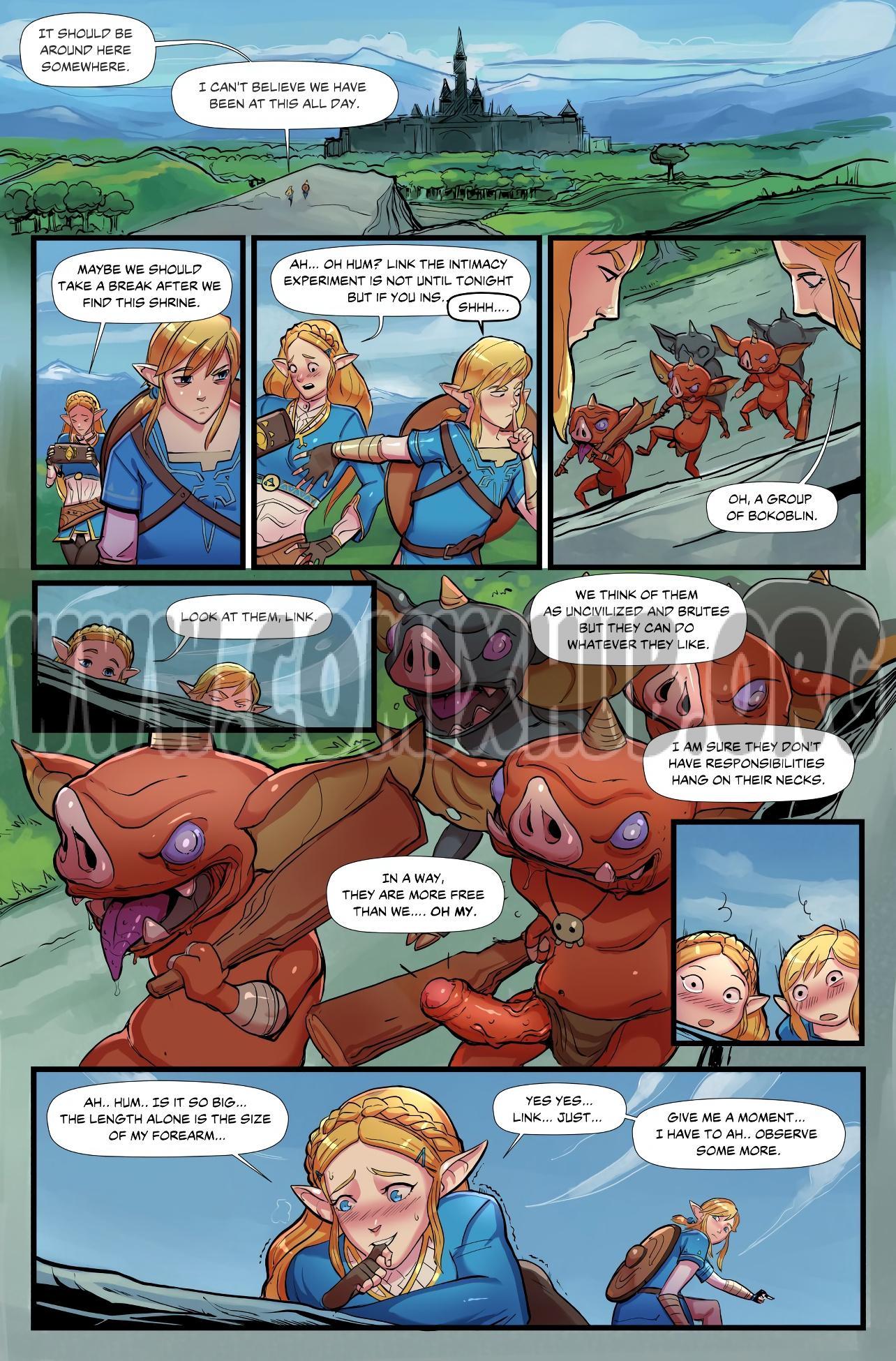 The Legend of Zelda_ Breath of Bokoblin Cock Fantasy, Elf
